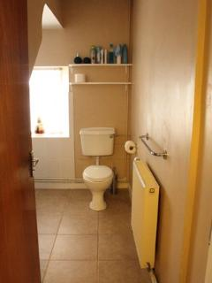 Downstairs bathroom with toilet, basin and bath with overhead shower