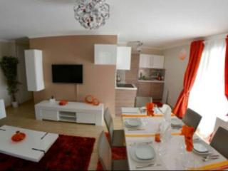 Luxury apartment 5*Disneyland-Paris 5 min (6pers), Serris