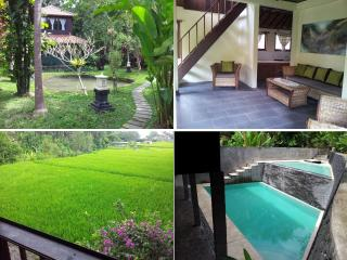 Sayan, Ubud 1 Bedroom Villa on spacious property