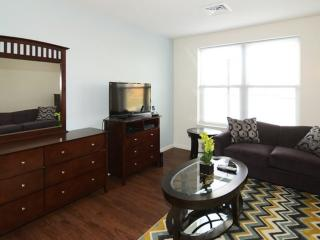 Amazingly Furnished 1 Bedroom and 1 Bathroom Apartment in Boston