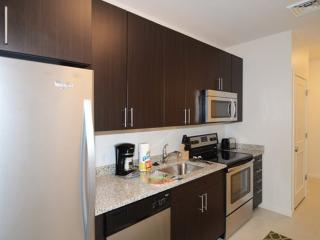 Impressive 1 Bedroom, 1 Bathroom Boston Apartment - Amazing Amenities
