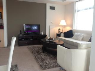 Fully Furnished 2 Bedroom, 2 Bathroom Apartment in Kendall Square With Full Kitchen, Cambridge