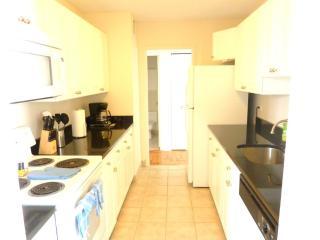 Furnished Apartment at Merrimac St & Staniford St Boston