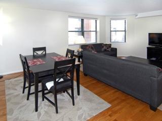 Luxurious 2 Bedroom, 1 Bathroom Apartment in Back Bay, Boston