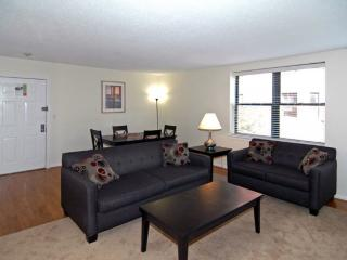 Furnished Apartment at Garrison St & Studio Pl Boston