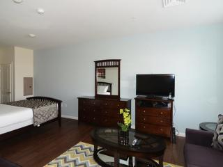 Building With Fitness Center - Nice 1 Bedroom, 1 Bathroom Boston Apartment