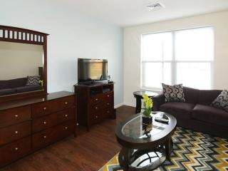 Cozy and Luxurious 1 Bedroom 1 Bathroom Apartment in Boston
