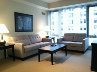 Furnished Apartment at Blossom St & Emerson Pl Boston
