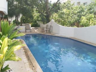 Perfect 3 Bedroom, 2 Bathrooms  - Newly remodeled, Playa del Carmen