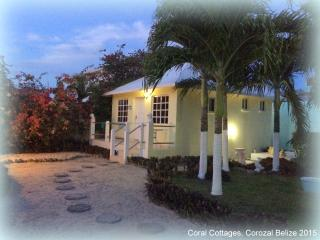 NO CAR NEEDED !! Cottage in Town close to it all !, Corozal