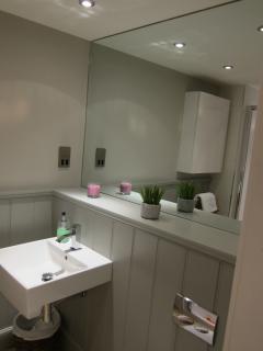 Contemporary spacious shower room.