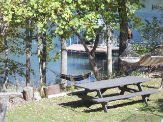 Chalet Retreat, Charming Beaver Lake Front Cabin, Rogers