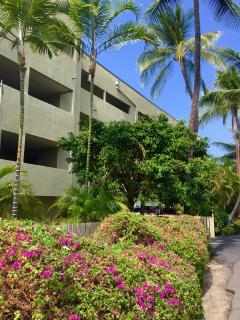 Front of Banyan Tree. Reserved covered parking stalls and security elevator.