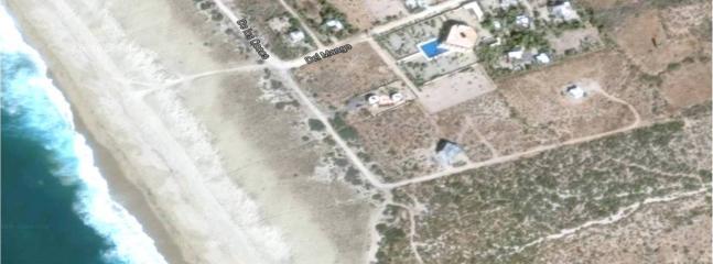 Que muestra el espacio abierto y de cactus nativo en el barrio.