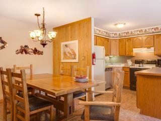 1 Bedroom, 2 Bathroom House in Breckenridge  (07B1)