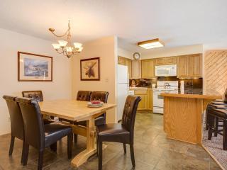 1 Bedroom, 2 Bathroom House in Breckenridge  (08D1)