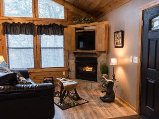 Jungle Safari - Pigeon Forge  Secluded Vacation Rental Cabin