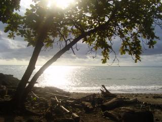 POINT BREAK CONDO, Tamarindo
