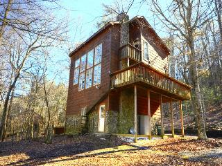 Otter Run, Coosawattee, Riverfront, Fenced Yard, Ellijay