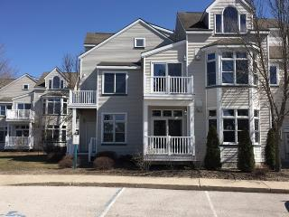 Cozy First Floor Condo Near Beach & Pools, Manistee
