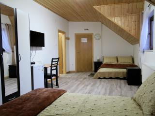 Good Night Room for 3 persons - Plitvice, Vrhovine