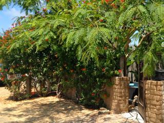 Villa in old Encinitas beach & town close -Swamis