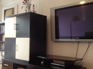 Beautiful 1BR pet friendly flat! 2 balconies, BBQ, Buenos Aires