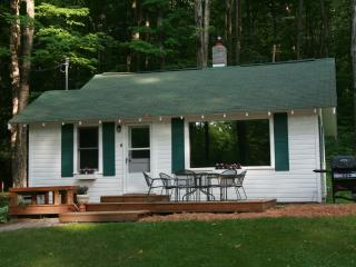 Up North Cabin- Big Glen Lake, Maple City