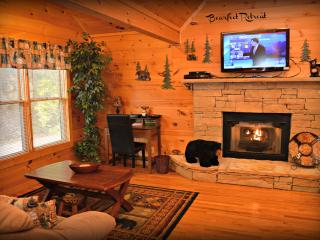 Rustic Elegant Serene Mountain Location 2 BR Cabin