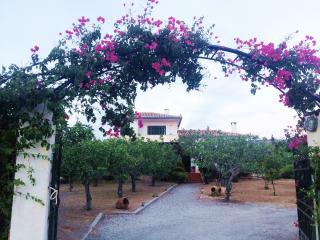 Pistachio House in Aegina