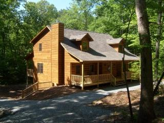 Huge 6 Bed Room Cabin on a Large Lot with Game Room and Fire Pit, Ellijay