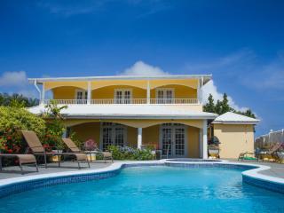 Oleander Villa Pool