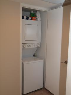 The unit contains a washer and dryer.  Note the detergent on top of the dryer, we supply it.