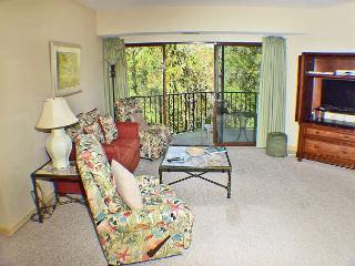 Forest Beach Villa 303 - Forest Beach One Level Flat