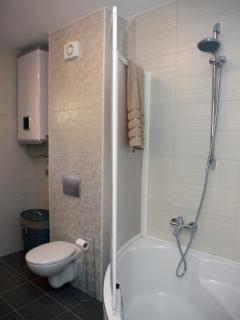 En suite shower and bath tub