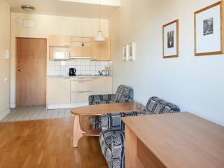 Small and cozy studio apartment Vingriu gatve.