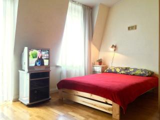 Small and cozy studio apartment Vingriu gatve.