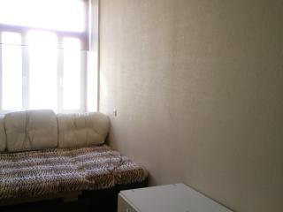 Сдается 3х комнатная квартира в центре Петербурга
