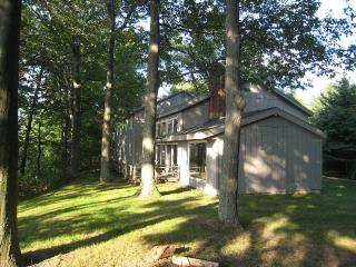 Beachfront Lodge On Lake Michigan (just listed), Mears