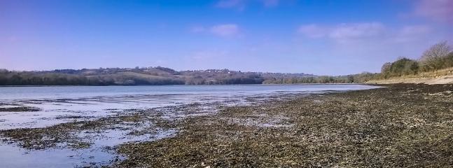 View from private shingle beach / shoreline