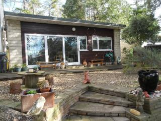 Woodland retreat nr beach and exmoor national park