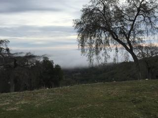 Jones Ridge Ranch and Vineyard-Hilltop Heaven!