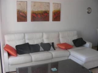 Luxury 2 bed 2 bath apt - Las Violetas Villamartin