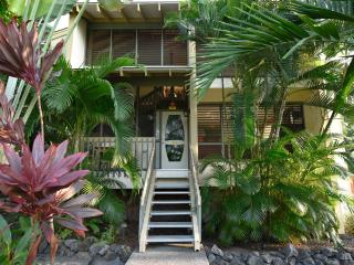 View of the front entrance of the Blue Lagoon Kona Rental with custom stained glass door.