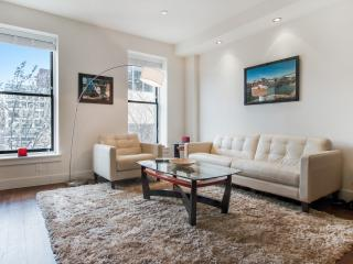 Luxury 1,010 Sq Foot Condo, New York City