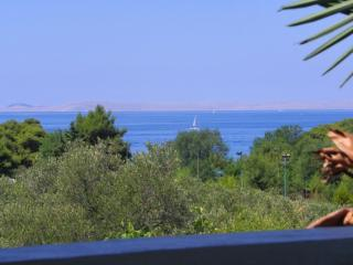 Apartments Villa Dolores - Two Bedroom Apartment with Balcony and Sea View (A4), Murter