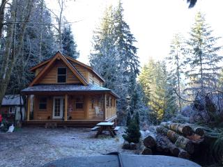 Mount Baker Cabin in the Woods