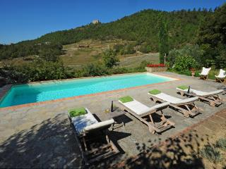 4 bedroom Villa in Montone, The Umbrian countryside, Umbria, Italy : ref 2383087