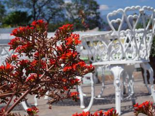 Casa sicarú  tu mejor opción, Oaxaca
