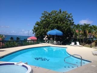 2 bedroom, 2 bath harborside condo in St. Croix